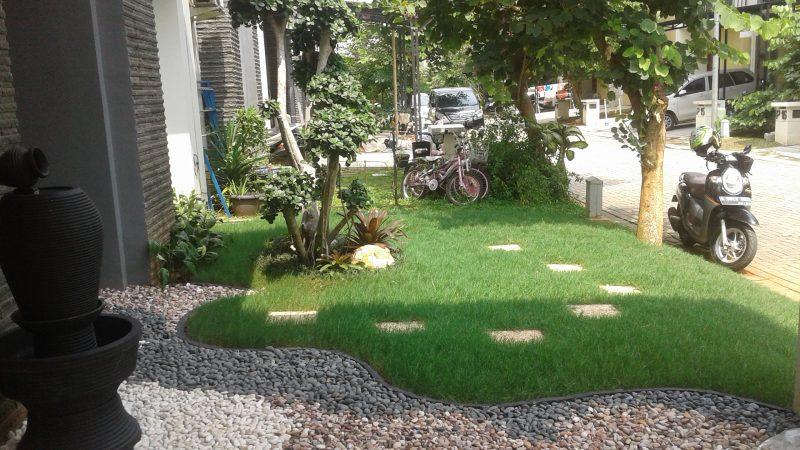 jasa pembuatan taman halaman rumah minimalis