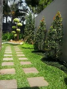 Jasa pembuatan taman murah dan bergaransi